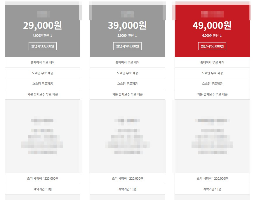 초기세팅비가 있는 홈페이지 제작업체의 호스팅 가격표
